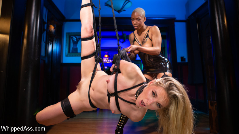 The Destruction of Cadence Luxe - WhippedAss